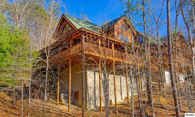 2009 Bear Haven Way Simply Amazing, Sevierville, TN 37876 (#221017) :: Colonial Real Estate