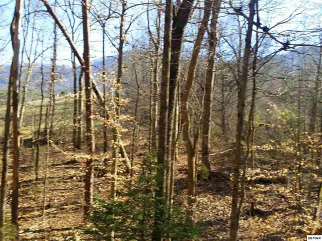Lot 69 Mistletoe Loop, Sevierville, TN 37876 (#221020) :: The Terrell Team
