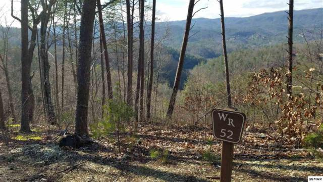 Lot 52 Mountain Holly Way, Sevierville, TN 37862 (#221033) :: The Terrell Team