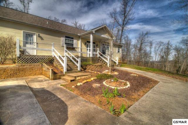 1048 Harbor Point Dr, Sevierville, TN 37876 (#221053) :: The Terrell Team
