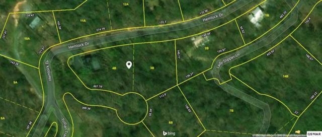 1230 Hemlock Drive, Gatlinburg, TN 37738 (#221076) :: The Terrell Team