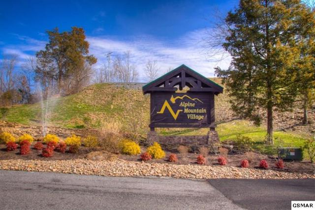 36 Alpine Mountain Way, Pigeon Forge, TN 37863 (#221134) :: Billy Houston Group