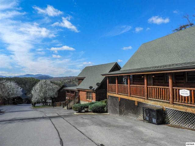 2007 Cougar Crossing Way, Sevierville, TN 37876 (#221141) :: The Terrell Team