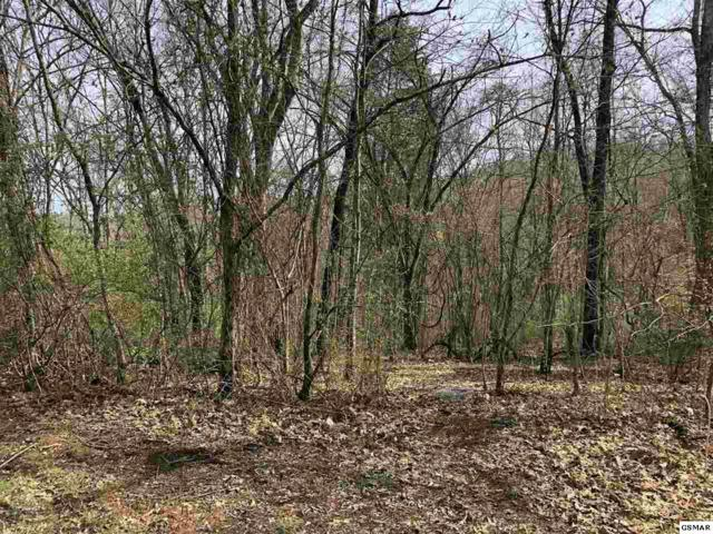 Lot #43 Big Chiefs Skyview Drive, Sevierville, TN 37876 (#221143) :: Four Seasons Realty, Inc