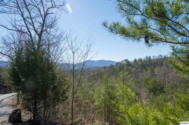 Lot 10 Summit Trails Drive, Sevierville, TN 37862 (#221151) :: The Terrell Team