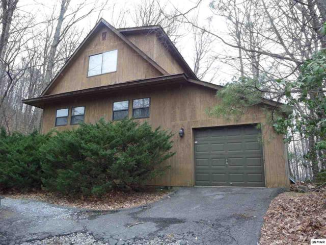 1160 Ski View Dr Mountain Lily, Gatlinburg, TN 37738 (#221173) :: Prime Mountain Properties