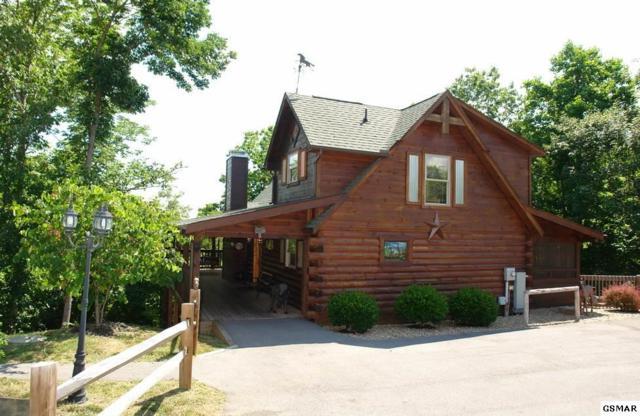 335 Oak Haven Way, Sevierville, TN 37876 (#221218) :: The Terrell Team
