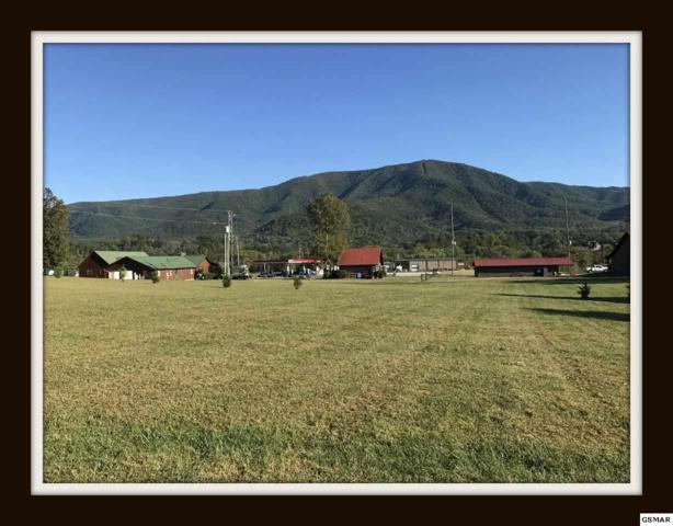 Lot 7R Laurelwood Avenue Residential Lot, Sevierville, TN 37862 (#221226) :: Prime Mountain Properties