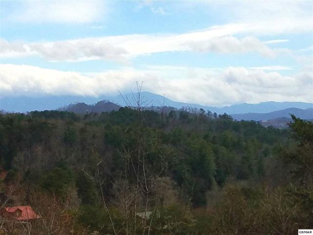 Lot 36 Nicoha, Sevierville, TN 37862 (#221229) :: The Terrell Team