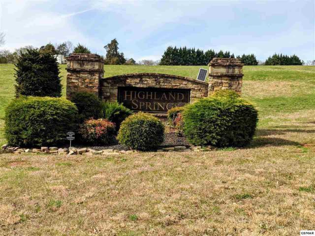 614 Winding Creek Way, Walland, TN 37886 (#221233) :: Prime Mountain Properties
