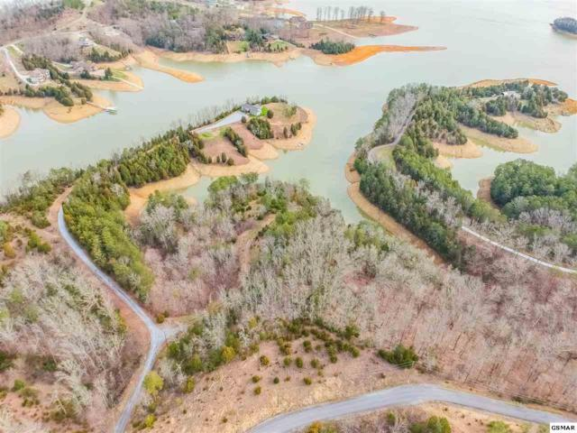 Lots 9,10, & 11 Hidden Cove Way, Sevierville, TN 37876 (#221240) :: Colonial Real Estate