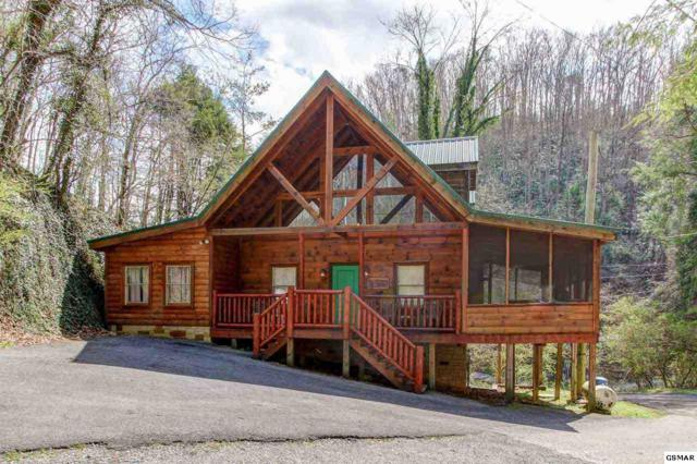 401 King Branch Road, Sevierville, TN 37876 (#221249) :: Billy Houston Group