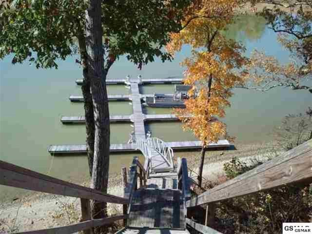 Lot 94,95 Blue Herring Way, Sevierville, TN 37876 (#221256) :: Billy Houston Group