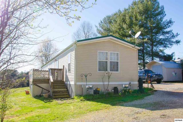 3731 Catewright Rd. Catlett Dr, Kodak, TN 37764 (#221266) :: Colonial Real Estate