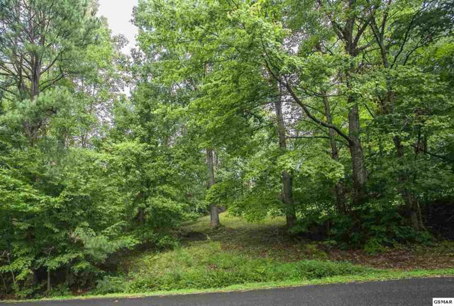 Lot 142 Overlook Ct, Sevierville, TN 37876 (#221285) :: The Terrell Team