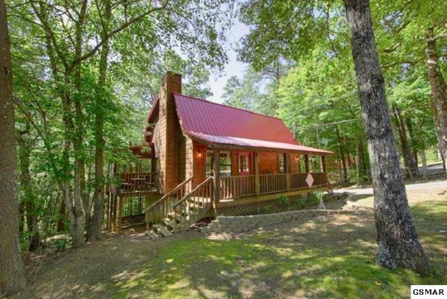 1785 Blue Ridge Rd, Sevierville, TN 37876 (#221296) :: Colonial Real Estate