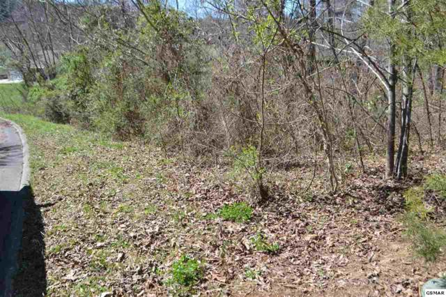 Lot 16 Big Buck Lane Mccleary Pointe, Seymour, TN 37865 (#221309) :: The Terrell Team