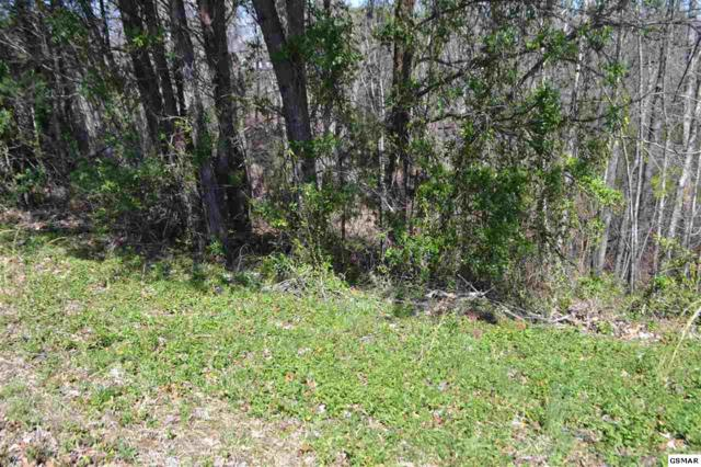 Lot 39 Kings Hills Blvd Kings Hills Pha, Pigeon Forge, TN 37863 (#221310) :: Colonial Real Estate