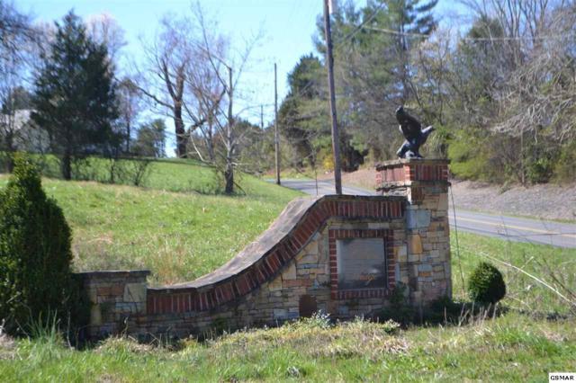 Lot 29 Sandpiper Ct Falcon Ridge, Kodak, TN 37764 (#221317) :: Colonial Real Estate