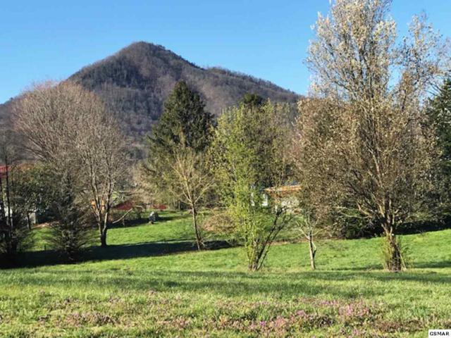 Lot 9 Deer Field Circle, Sevierville, TN 37862 (#221330) :: The Terrell Team