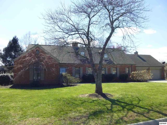 1210 Briar Lea, Sevierville, TN 37862 (#221333) :: Colonial Real Estate