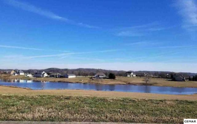 Lot 126 Fair Meadow Dr, Dandridge, TN 37725 (#221337) :: The Terrell Team
