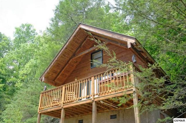 527 Patterson Lane Three Cabin Res, Gatlinburg, TN 37738 (#221344) :: Prime Mountain Properties