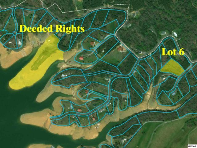Lot 6 Debras Way, Sevierville, TN 37876 (#221354) :: The Terrell Team