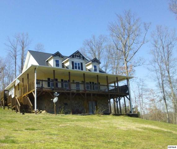 2641 Schisandra Lane, Cosby, TN 37722 (#221362) :: Prime Mountain Properties