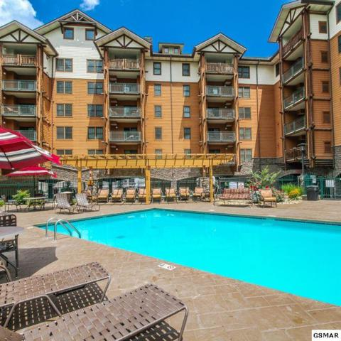215 Woliss Lane  Unit 509, Gatlinburg, TN 37738 (#221364) :: The Terrell Team