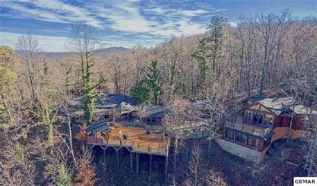646 Jefferson Road, Gatlinburg, TN 37738 (#221366) :: The Terrell Team