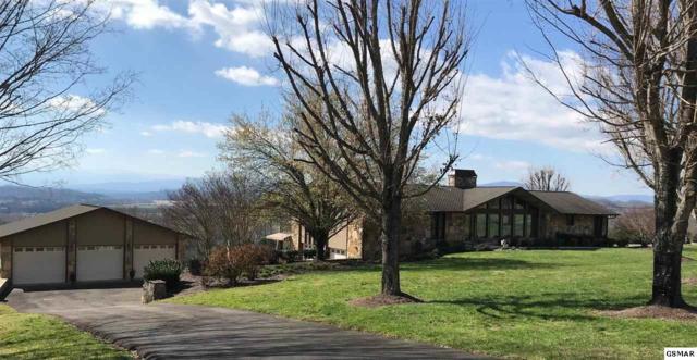 369 Grandview Dr, Kodak, TN 37764 (#221370) :: Colonial Real Estate