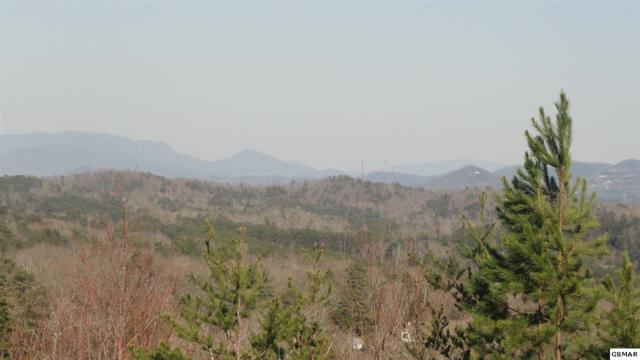 Lot 55 Laughing Pines Lane, Sevierville, TN 37862 (#221380) :: Colonial Real Estate