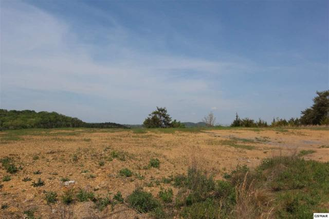Lot 10 Harbor Point Dr, Sevierville, TN 37876 (#221396) :: The Terrell Team