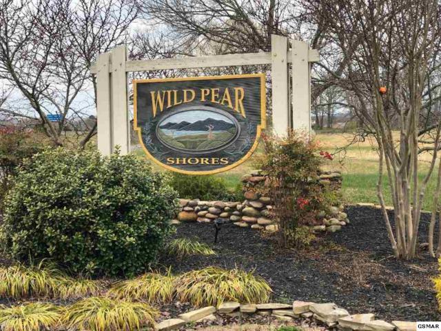 133 Fair Meadows, Dandridge, TN 37725 (#221399) :: Four Seasons Realty, Inc