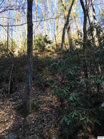 Lot 33 Mountain Blvd, Sevierville, TN 37876 (#221403) :: Prime Mountain Properties