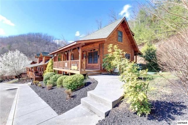 3143 Smoky Ridge Way, Sevierville, TN 37862 (#221406) :: The Terrell Team