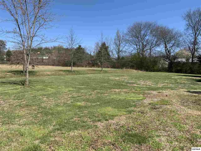 Lot 10 Slippery Rock Circle, Pigeon Forge, TN 37862 (#221409) :: The Terrell Team