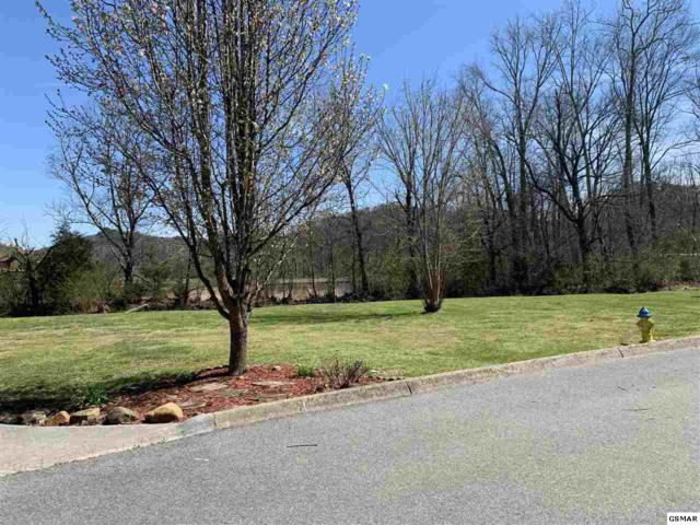 Lot 12 Slippery Rock Circle, Pigeon Forge, TN 37862 (#221410) :: The Terrell Team