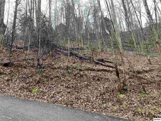 Lot 335A Lamons Loop, Sevierville, TN 37876 (#221430) :: The Terrell Team