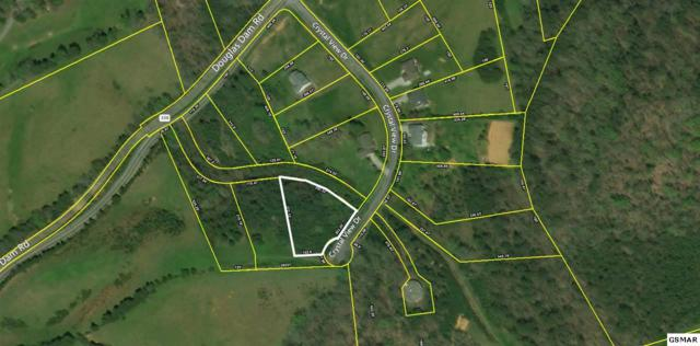 Lot 11 Crystal View Drive, Sevierville, TN 37876 (#221452) :: The Terrell Team