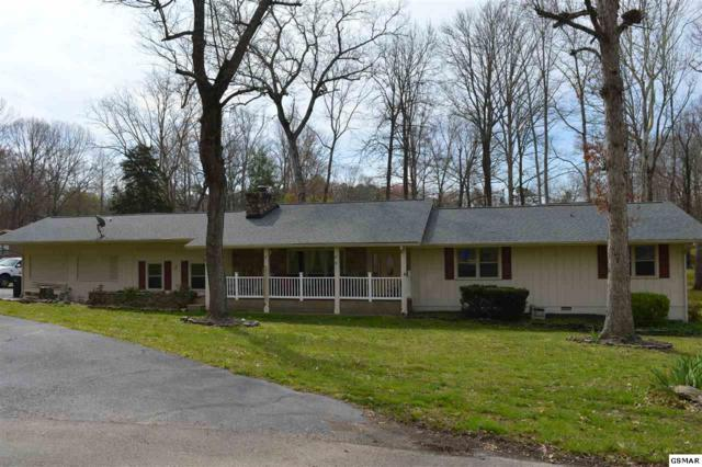 224 Hemlock Ct, Sevierville, TN 37862 (#221472) :: Colonial Real Estate