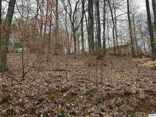 Lot #97 Highpoint Dr, Sevierville, TN 37876 (#221516) :: Four Seasons Realty, Inc