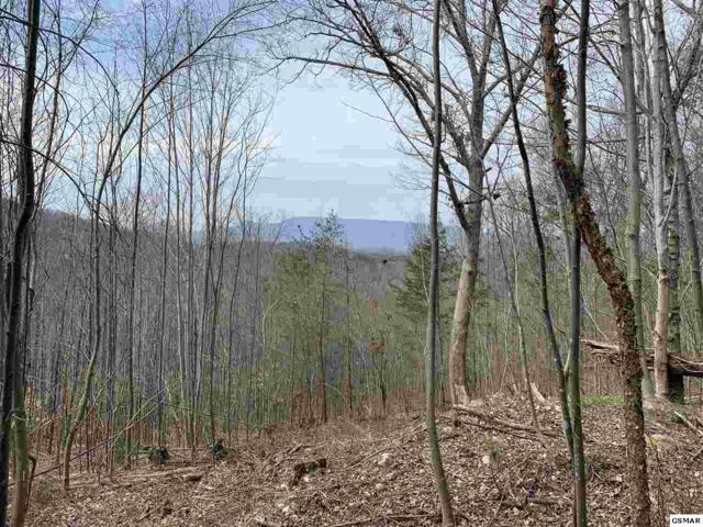 Lot 4 & 6 Eagle Mountain Road, Newport, TN 37821 (#221541) :: Four Seasons Realty, Inc