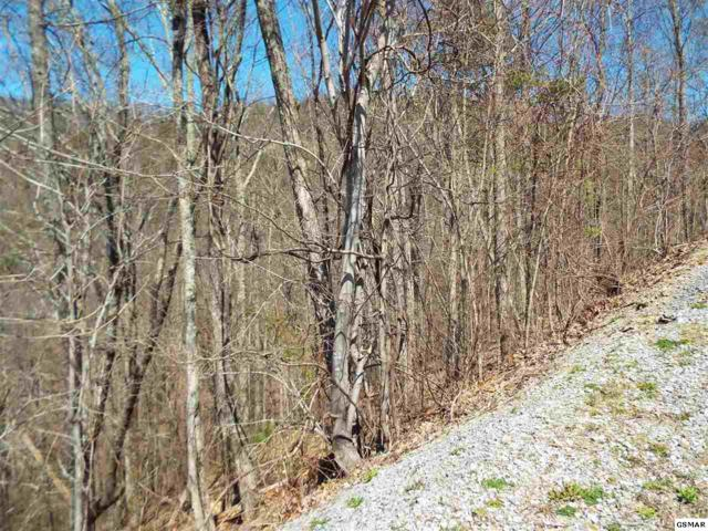 Lot 61E Redtail Road, Sevierville, TN 37862 (#221559) :: The Terrell Team