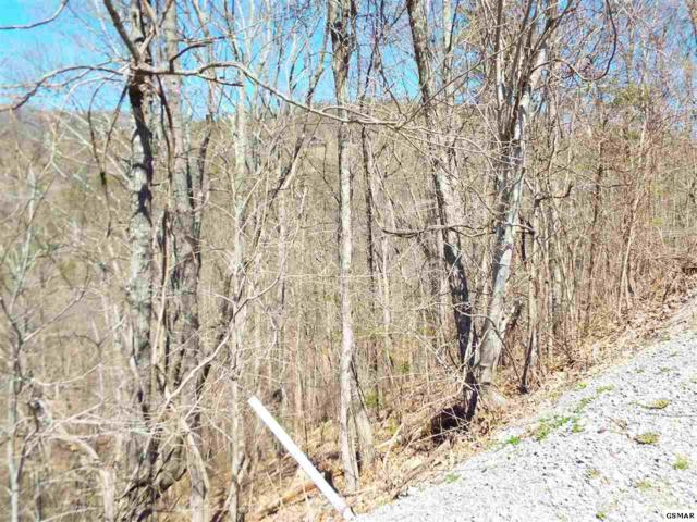 Lot 60E Redtail Road, Sevierville, TN 37862 (#221560) :: The Terrell Team