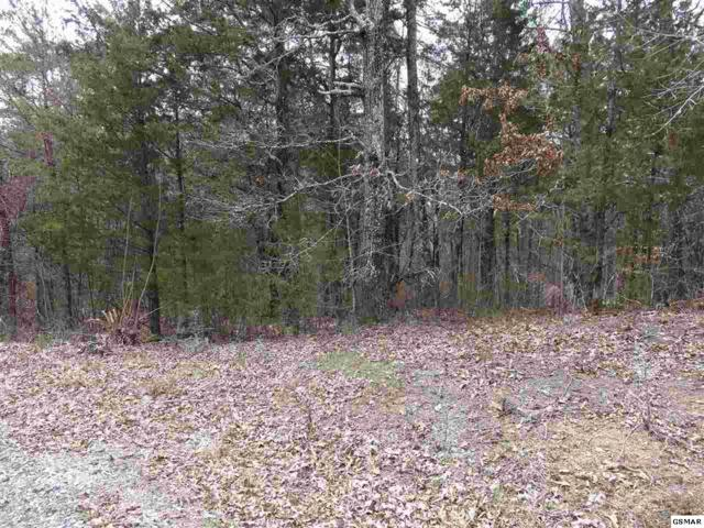 Lot 2 Island View Rd., Sevierville, TN 37876 (#221566) :: Colonial Real Estate