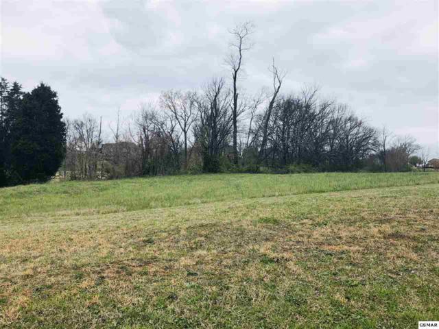 533 Providence Drive, Jefferson City, TN 37760 (#221593) :: Four Seasons Realty, Inc
