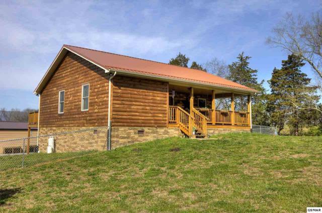 634 Marvin Way, Newport, TN 37821 (#221619) :: Prime Mountain Properties