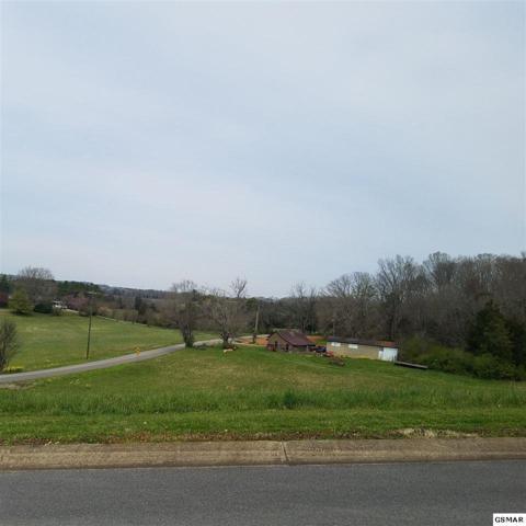 Bentview, Kodak, TN 37764 (#221623) :: Four Seasons Realty, Inc